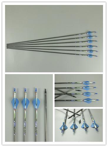 Frecce in Carbonio da 31
