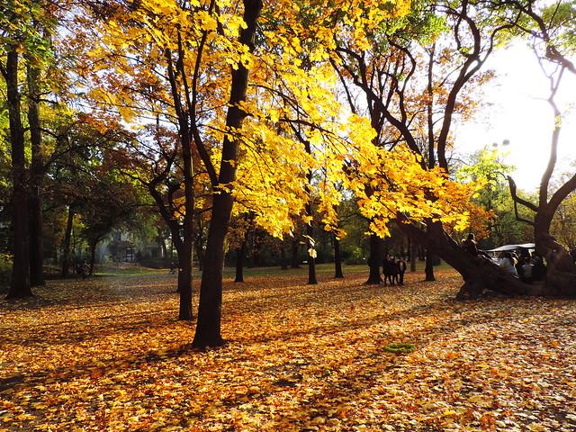 Autumn In Budapest: Margaret Island, Budapest, Hungary