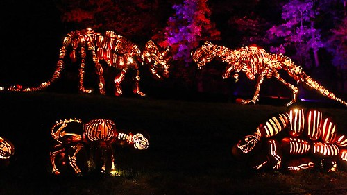The Great Jack O'Lantern Blaze Presented by the Historic Hudson Valley (13)