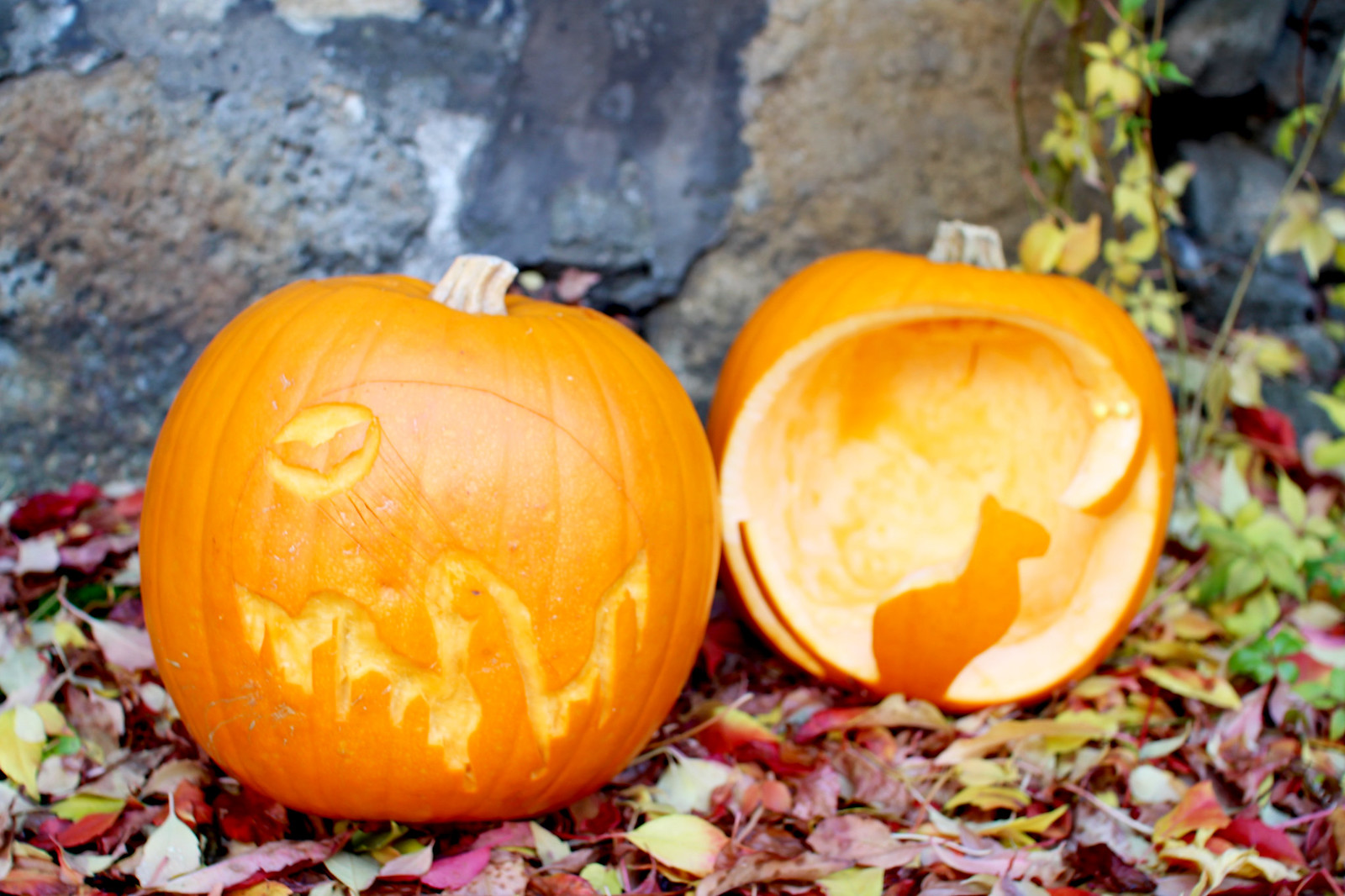 How to carve a pumpkin UK lifestyle blogger The Little Things