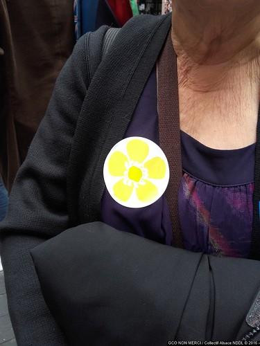 #GPII #Strasbourg #PE 2016-1026 Remise de la sentence du TPP au Parlement Européen 20161026_154508