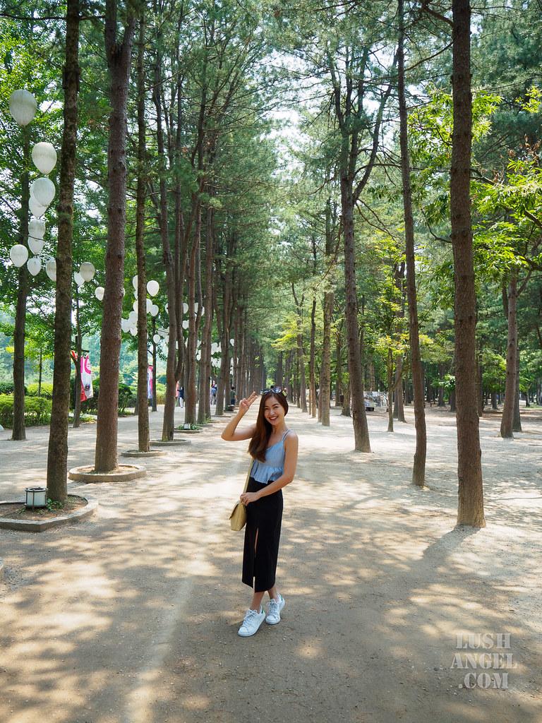 nami-island-korea-travel