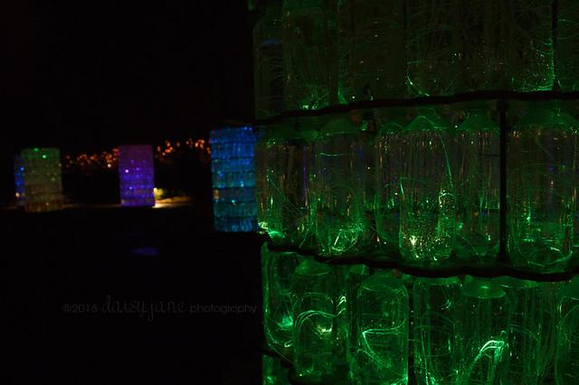 bruce light at arboretum-15web