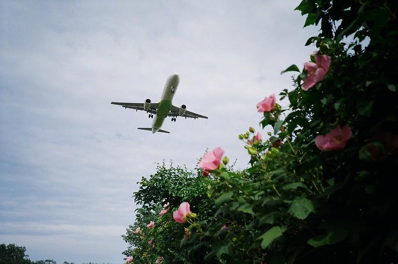 Air Busan A321-00