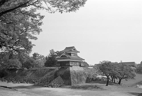 from Ninomaru park