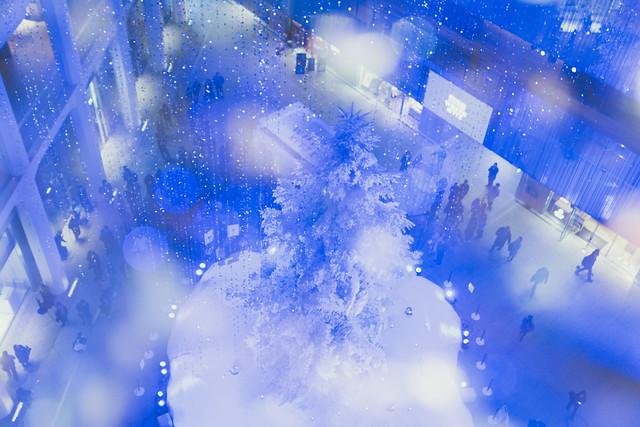 雪が舞うWHITE KITTE