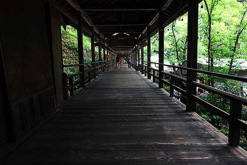 富士川町 あじさい寺、妙法寺 渡り廊下