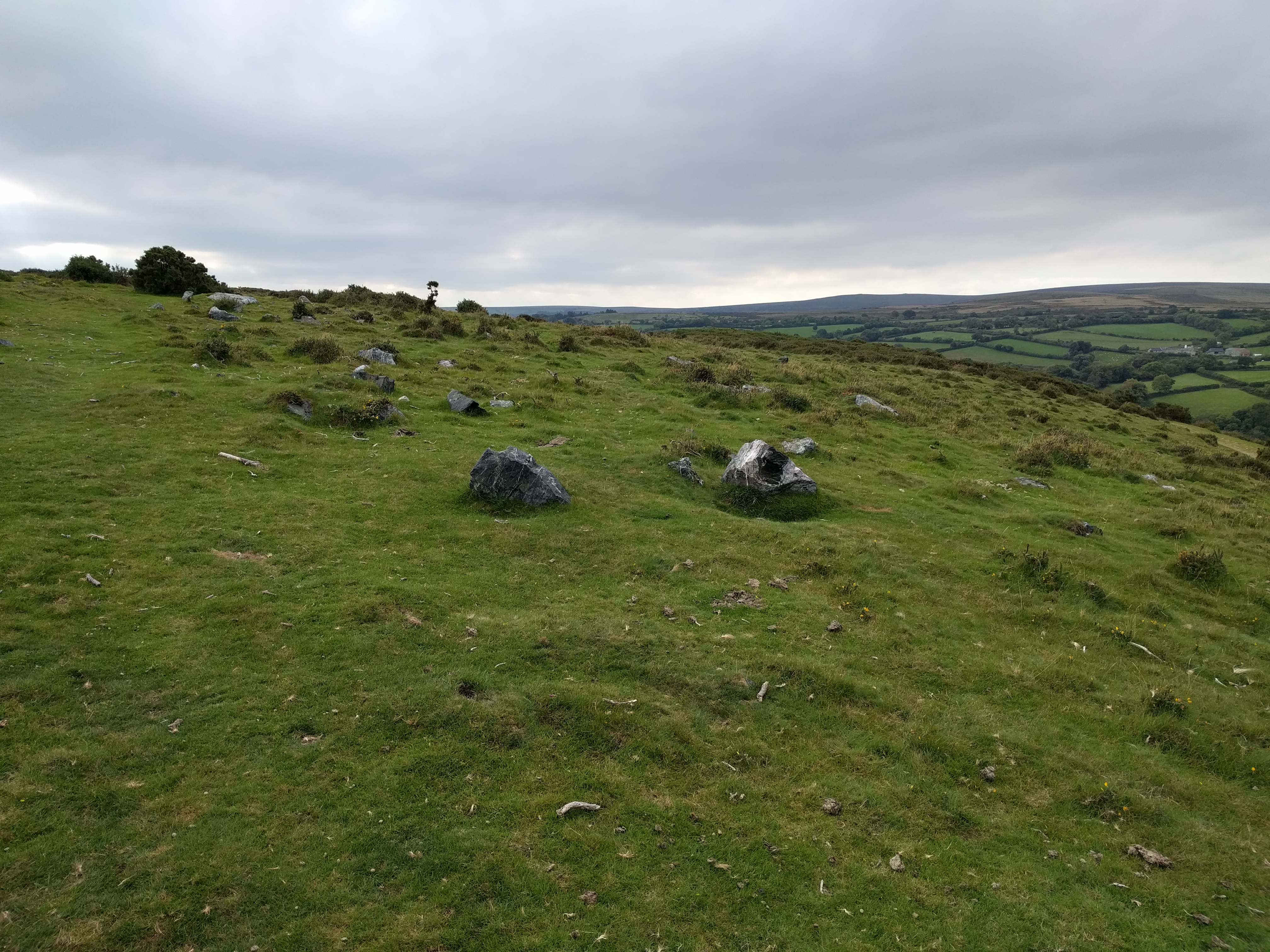 Remnants of Aish Tor #sh #twomoorsway