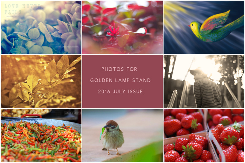 Photos for Golden Lamp Stand 2016 July
