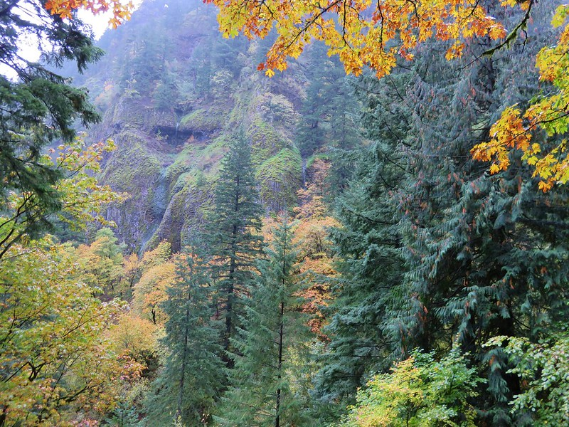 Fall colors and seasonal waterfalls along the Nesmith Point Trail