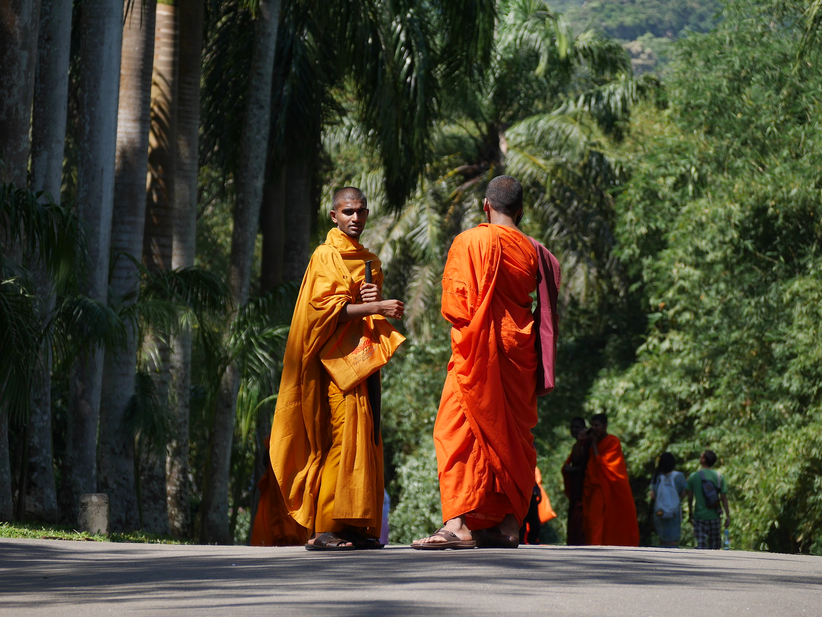 Monks(Kandy Botanical Gardens, Sri Lanka)