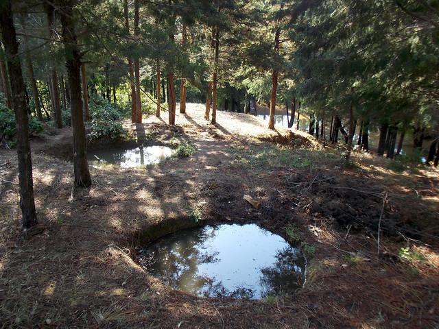 गाडखर्क की पहाड़ी पर पानी से लबालब जलतलैया