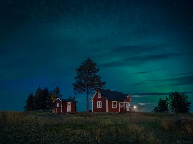 Rödkallen Norrsken