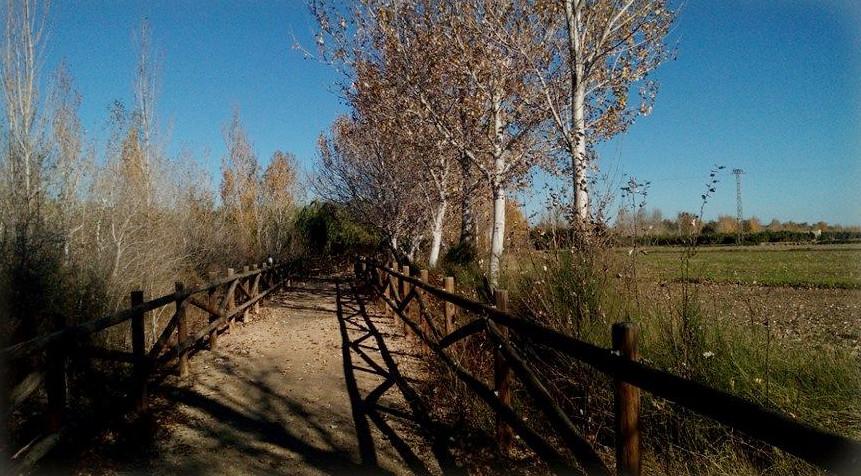 Passeig del camí vora el riu Ebre