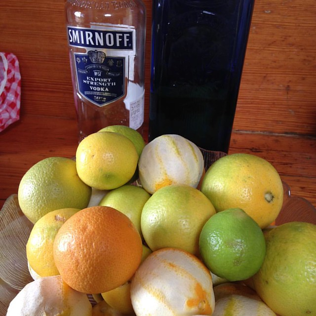 The aftermath of homemade cointreau liquor making #bitterorange #yurtlife