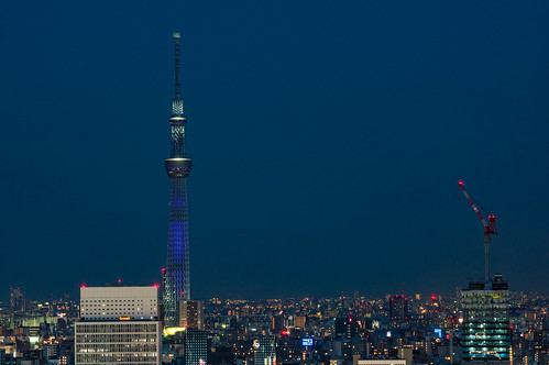 View of Tokyo Sky Tree from Bunkyo Civic Center