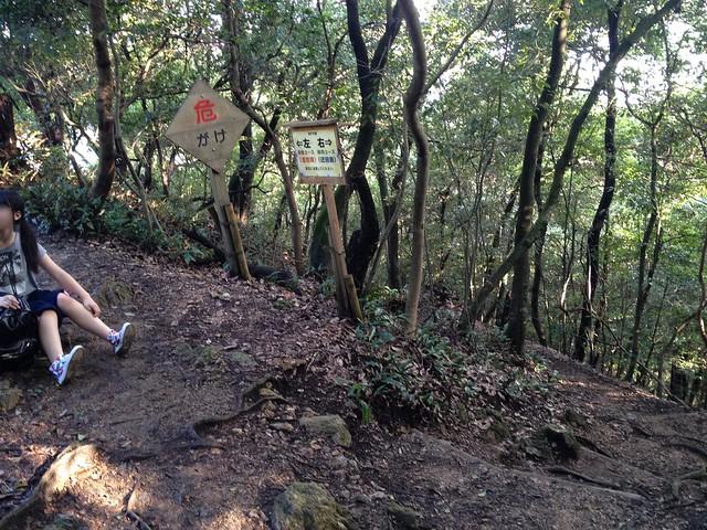 金華山 東坂ハイキングコース 崖分岐