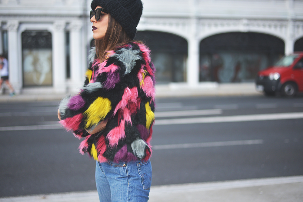 colorful on fur