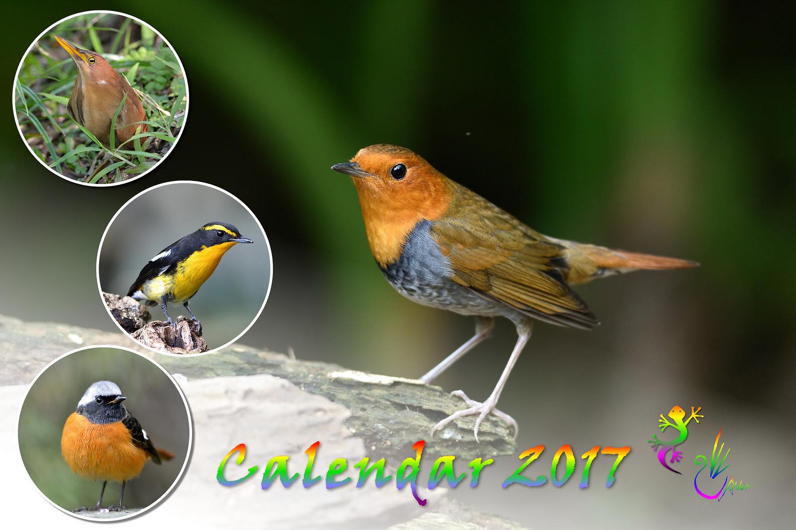 Calendar2017_2_01
