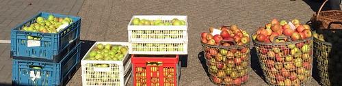 appeldag Woold boerengoed 2016