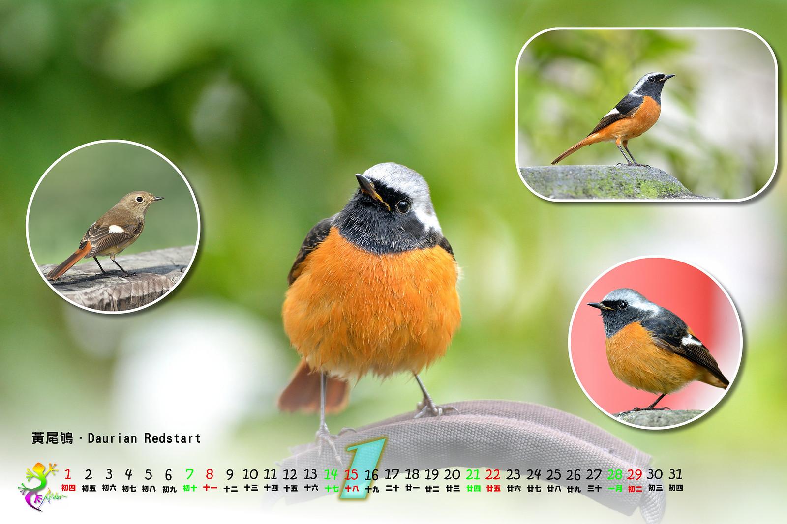 Calendar2017_2_02