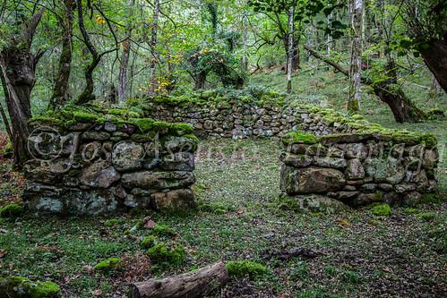 Ruta de la castaña o kirikinausiak #DePaseoConLarri #Flickr      -1529