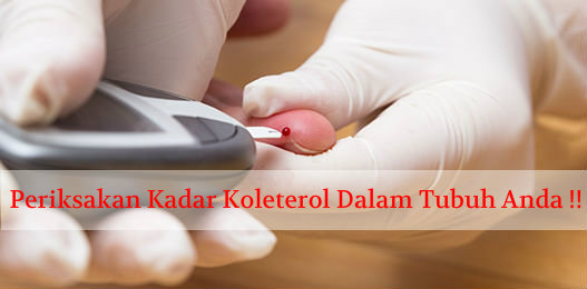 Berapa Batas Kolesterol Normal