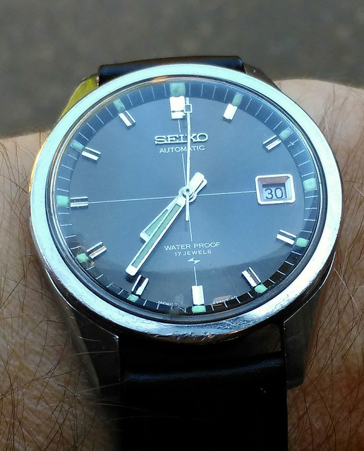 Let us see your Seikos  - Page 2 21215477414_a704098474_z