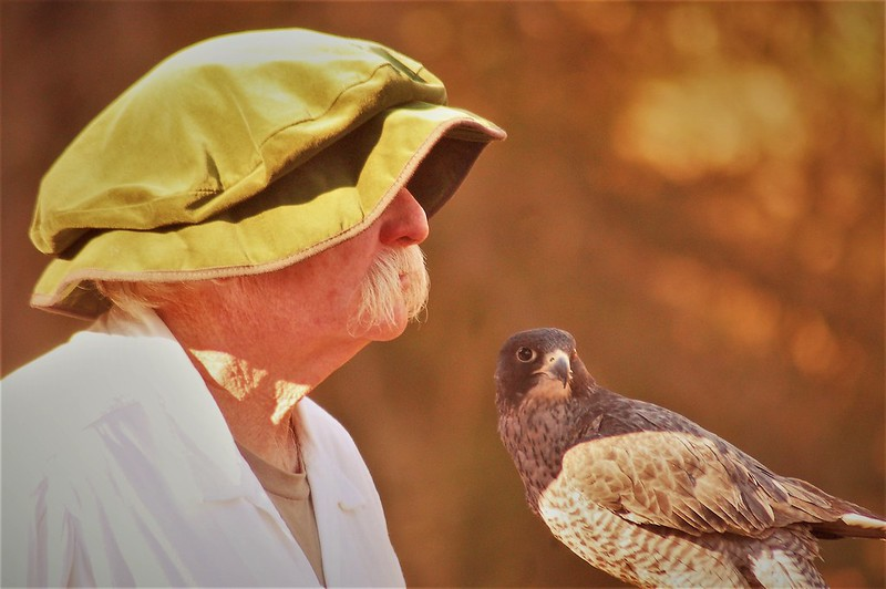 человек с птицей