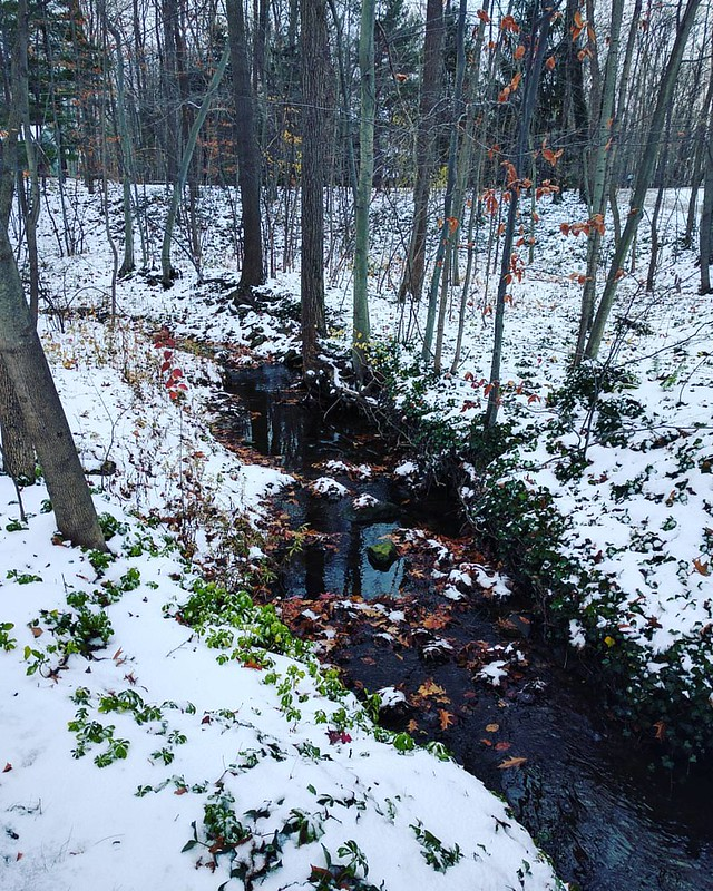 First snowfall. Front yard. This place could make me like winter. #neohio #home #creek #snow