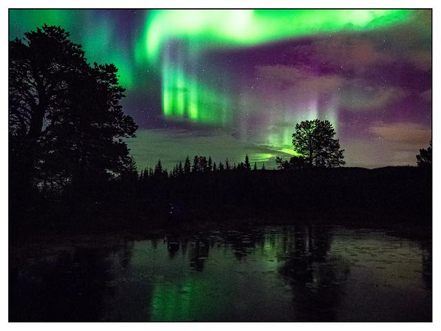 Aurora Borealis (2)