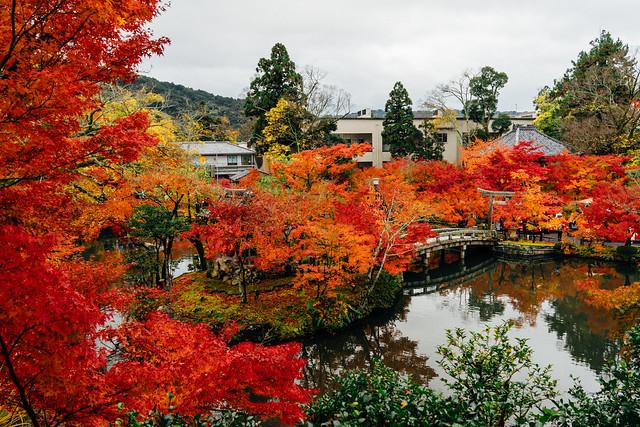 Kyoto_Eikando_24