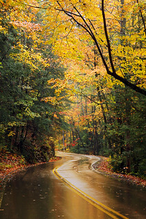 Signal Mountain Fall | by Virginia Bailey Photography