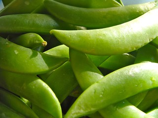 snap_peas | by JMacPherson