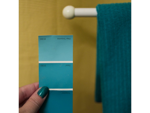 Utata teal paint 003 nancy ward flickr for How to make teal paint