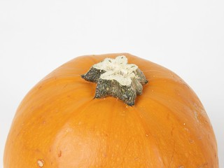 Pumpkin with stem trimmed and smoothed | by 1lenore