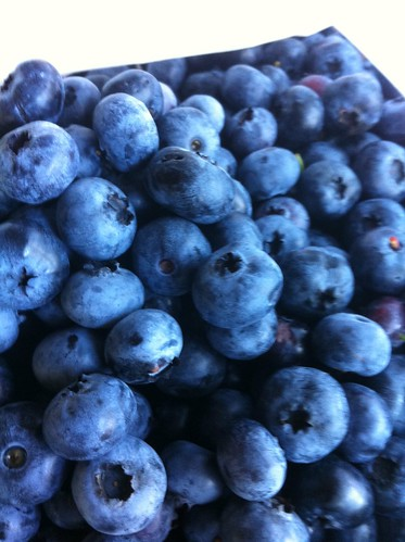 Quick Hit: Blueberries | by mrs.chili