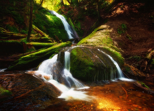 Coal Creek Falls | by Gabriel Tompkins