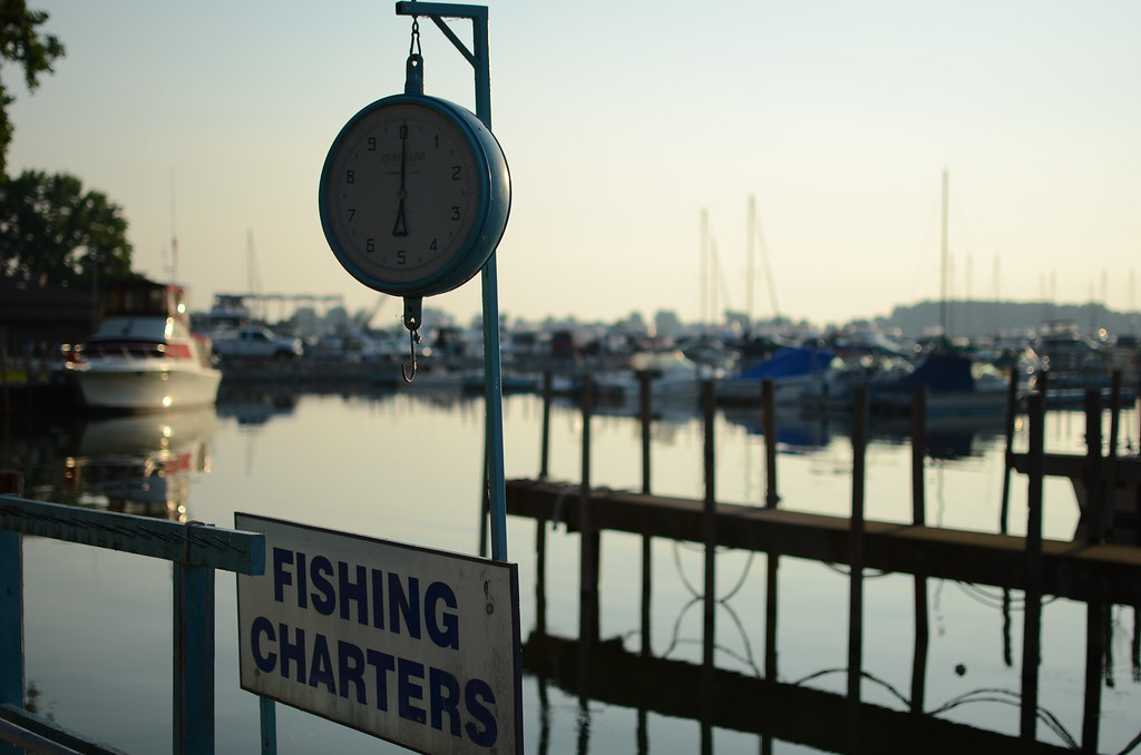 Factors To Consider While Availing of Fishing Charter Service