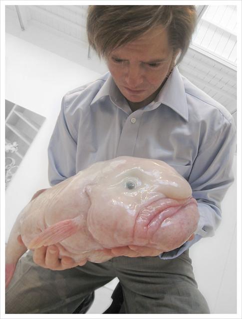 Eulogy for a Blobfish, New York, NY