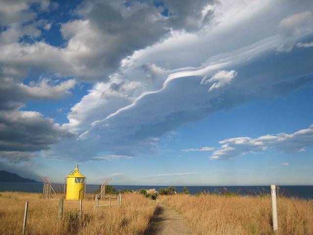 Kiwi sky