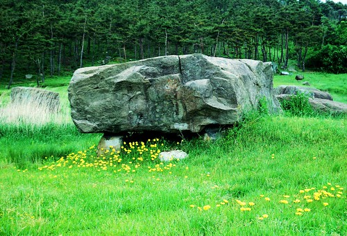 Gochang, Hwasun, and Ganghwa Dolmen Sites (7)
