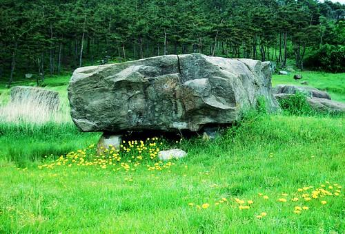 Gochang, Hwasun, and Ganghwa Dolmen Sites (7)