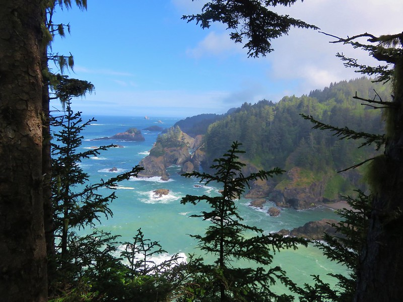 View from the Oregon Coast Trail near Secret Beach