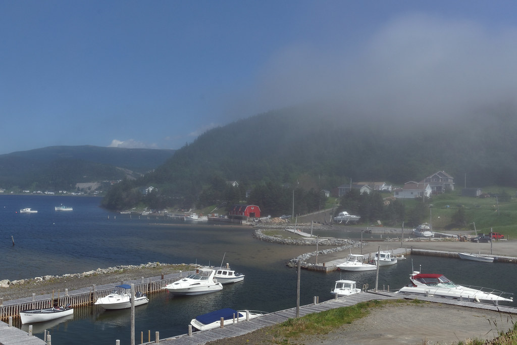 Fog On Neddie's Harbor