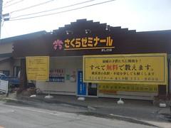 DSCN9504
