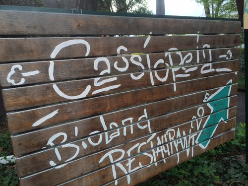 Stuttgart organic restaurant