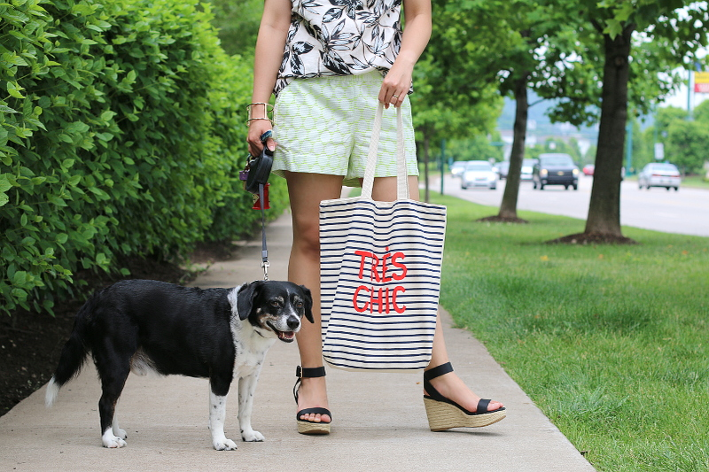 J-Crew-shorts-old-navy-tres-chic-tote-dog-pose-9