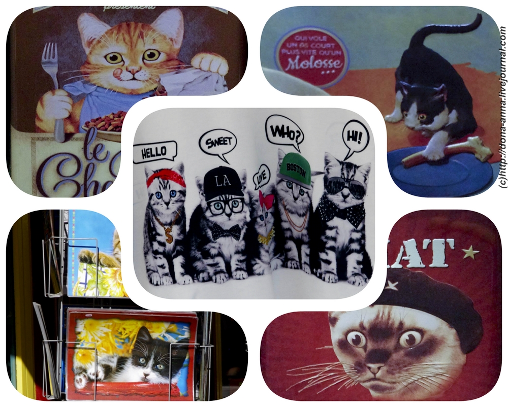 cats-collage-a