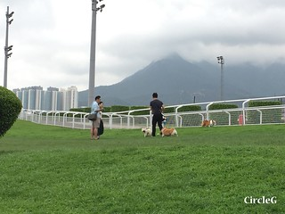 CIRCLEG 遊記 沙田 火炭 彭福公園公園 (23)